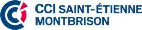 CCI SAINT ETIENNE/MONTBRISON